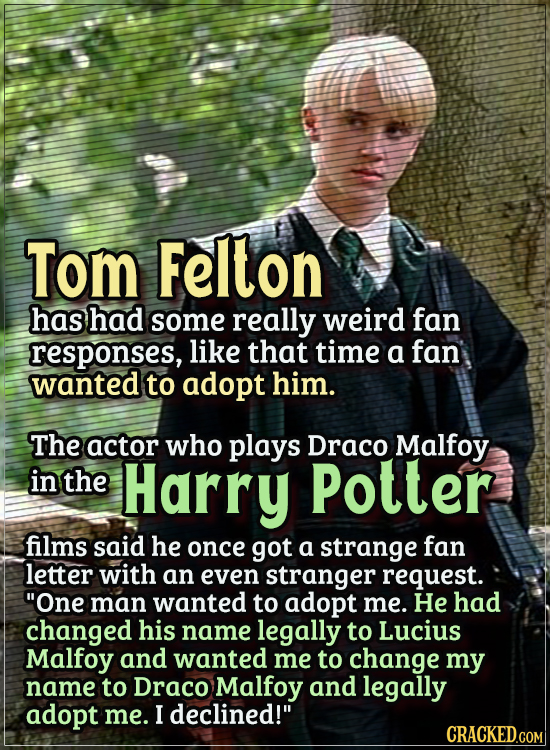 Actors Who Got Some WTF Responses From The Public - Tom Felton has had some really weird fan responses, like that time a fan wanted to adopt him.  The
