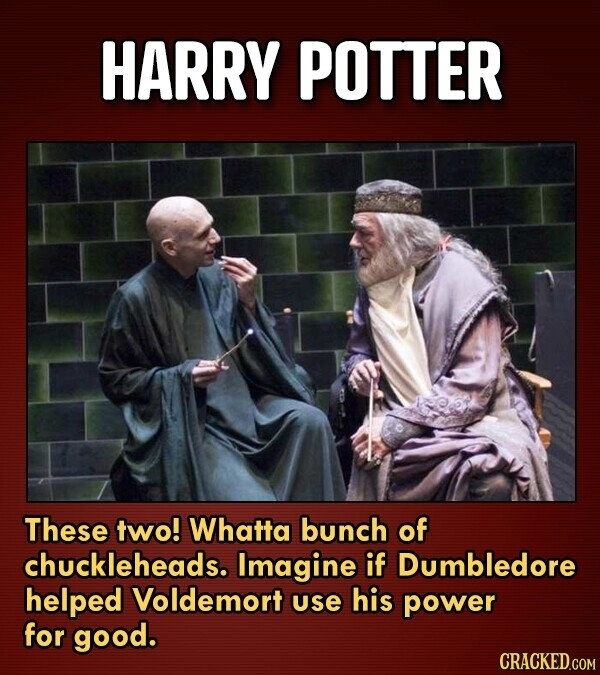 HARRY POTTER These two! Whatta bunch of chuckleheads. Imagine if Dumbledore helped Voldemort use his power for good.