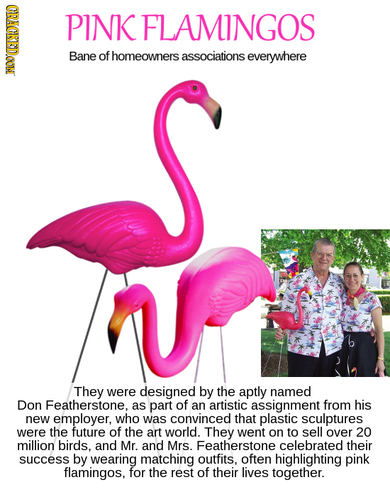 CRACKEDOON PINK FLAMINGOS Bane of homeowners associations everywhere They were designed by the aptly named Don Featherstone. as part of an artistic as