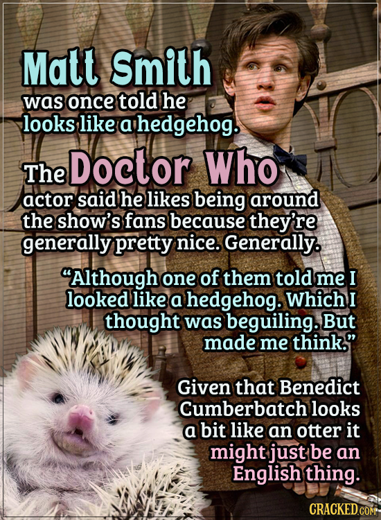 Actors Who Got Some WTF Responses From The Public - Matt Smith was once told he looks like a hedgehog.  The Doctor Who actor said that he likes being