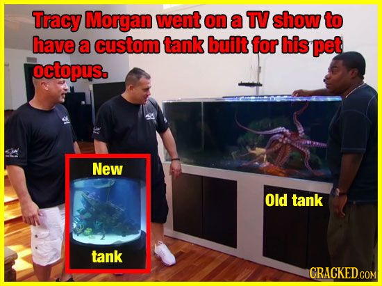 Tracy Morgan went on a TV show to have a custom tank built for his pet octopus. New Old tank tank CRACKED.COM