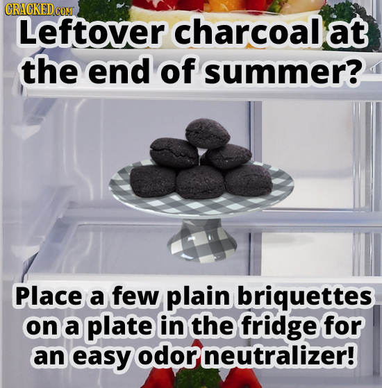 Leftover charcoal at the end of summer? Place a few plain briquettes on a plate in the fridge for an easy odorneutralizer!