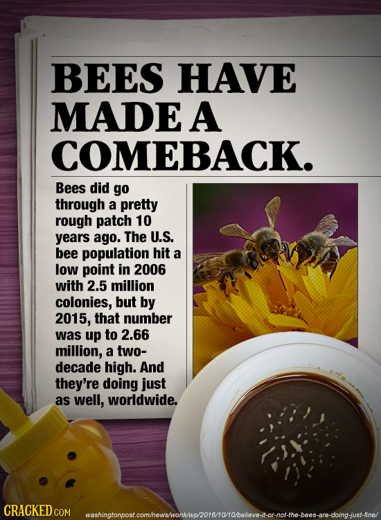 BEES HAVE MADE A COMEBACK. Bees did go through a pretty rough patch 10 years ago. The U.S. bee population hit a low point in 2006 with 2.5 million col