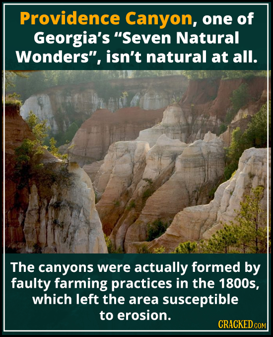 Providence Canyon, one of Georgia's Seven Natural Wonders, isn't natural at all. The canyons were actually formed by faulty farming practices in the