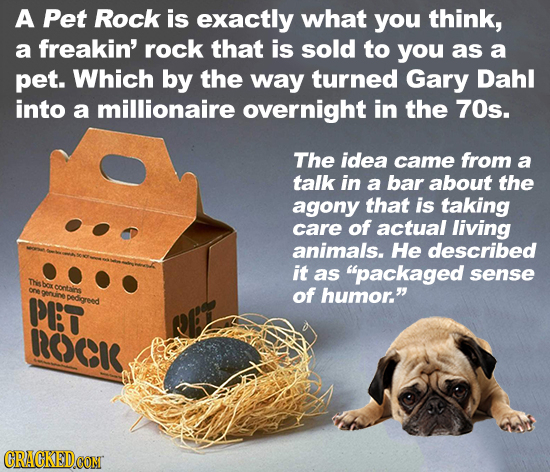 A Pet Rock is exactly what you think, a freakin' rock that is sold to you as a pet. Which by the way turned Gary Dahl into a millionaire overnight in