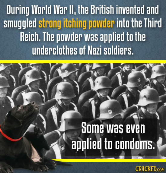 During World War IL, the British invented and smuggled strong itching powder into the Third Reich. The powder Was applied to the underclothes of Nazi