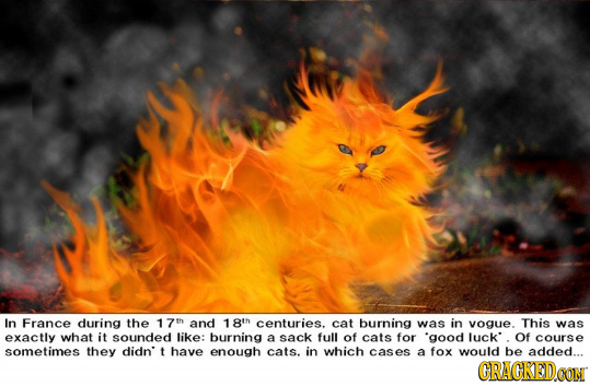 In France during the 17th and 18th centuries. cat burning was in vogue. This was exactly what it sounded like: burning a sack full of cats for 'good I