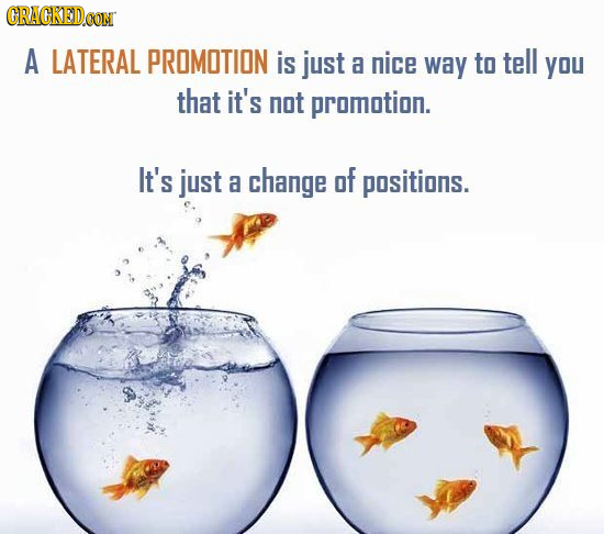CRACKEDCON A LATERAL PROMOTION is just a nice way to tell you that it's not promotion. It's just a change of positions.