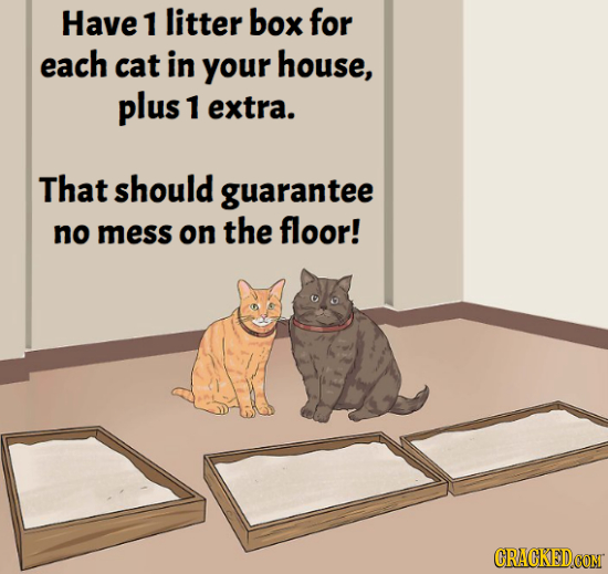 Have 1 litter box for each cat in your house, plus 1 extra. That should guarantee no mess on the floor! CRACKEDCOMT
