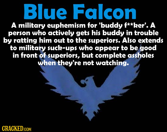 Blue Falcon A military euphemism for 'buddy f**ker'. A person who actively gets his buddy in trouble by ratting him out to the superiors. Also extends
