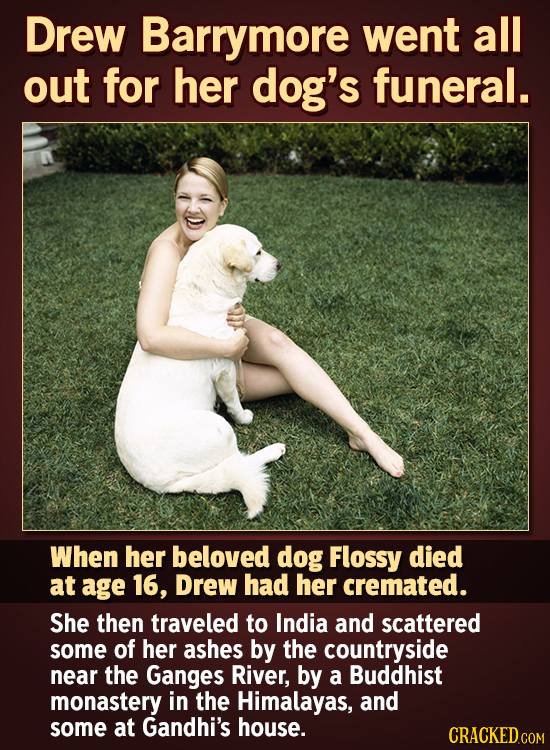 Drew Barrymore went all out for her dog's funeral. When her beloved dog Flossy died at age 16, Drew had her cremated. She then traveled to India and s
