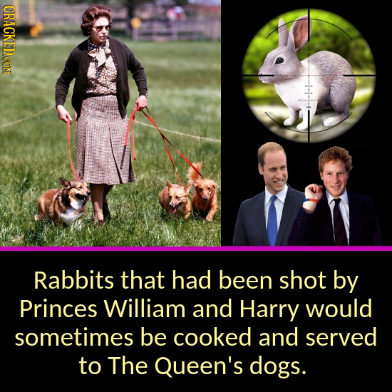 Rabbits that had been shot by Princes William and Harry would sometimes be cooked and served to The Queen's dogs.