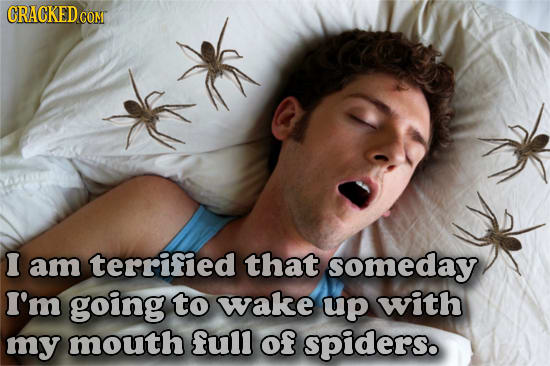 CRACKEDG CONT I am terrified that someday I'm going to wake up with my mouth ful of spiders.