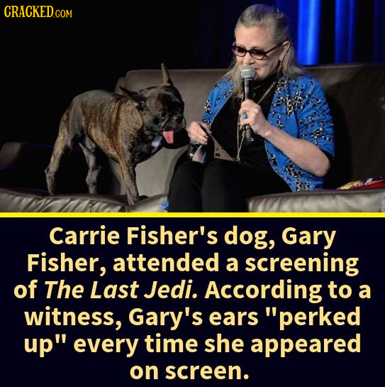 CRACKED COM Carrie Fisher's dog, Gary Fisher, attended a screening of The Last Jedi. According to a witness, Gary's ears perked up every time she ap