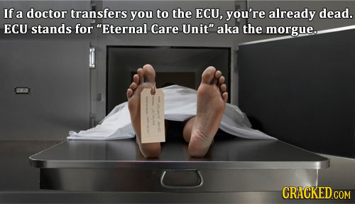 If a doctor transfers you to the ECU, you're already dead. ECU stands for Eternal Care Unit aka the morgue.. ma