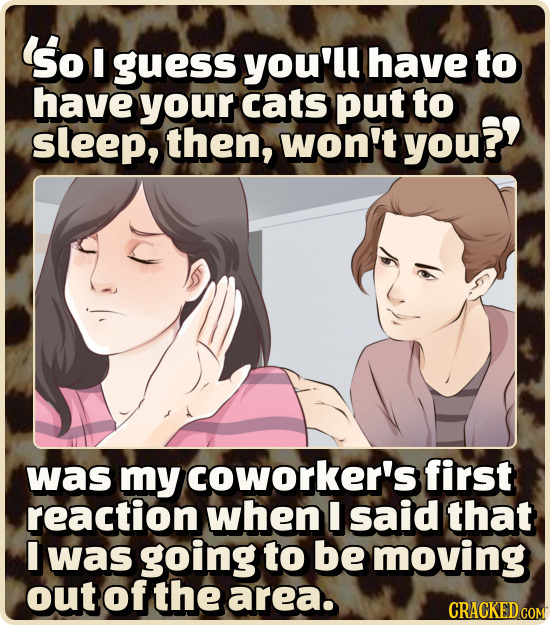 So guess you'll have to have your cats put to sleep, then, won't you?? was my coworker's first reaction when I said that I was going to be moving out
