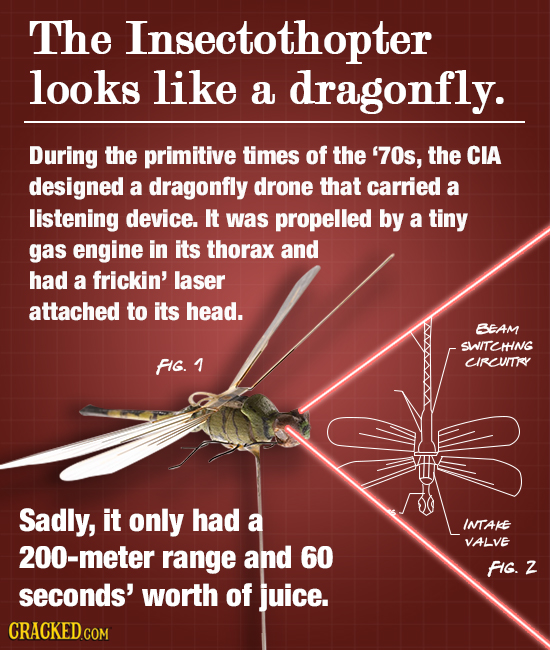 The Insectothopter looks like a dragonfly. During the primitive timES of the '70s, the CIA designed a dragonfly drone that carried a listening device.