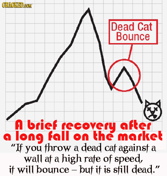 CRACKEDcO Dead Cat Bounce A brief rscovrY after n long fall on the mrkeT If you throw a dead cat against a wall af a high rate of speed, if will boun