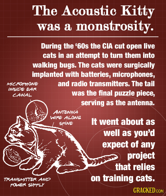 The Acoustic Kitty was a monstrosity. During the '60s the CIA cut open live cats in an attempt to tum them into walking bugs. The cats were surgically