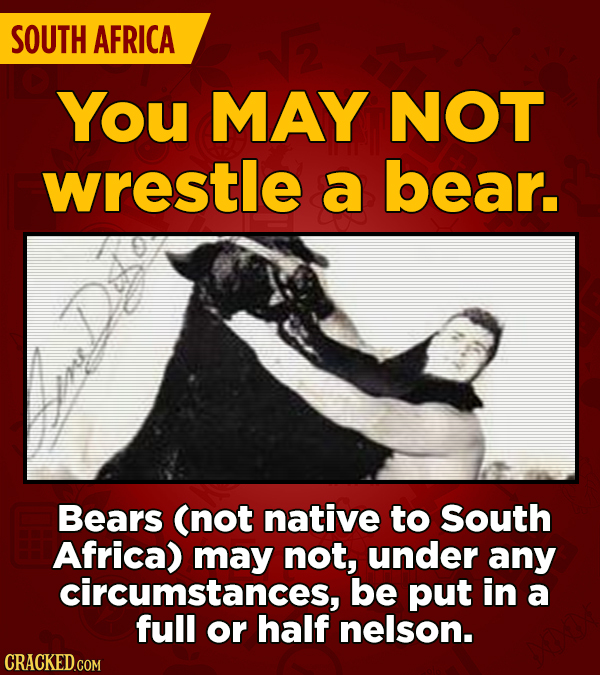 SOUTH AFRICA You MAY NOT wrestle a bear. Bears (not native to South Africa) may not, under any circumstances, be put in a full or half nelson.