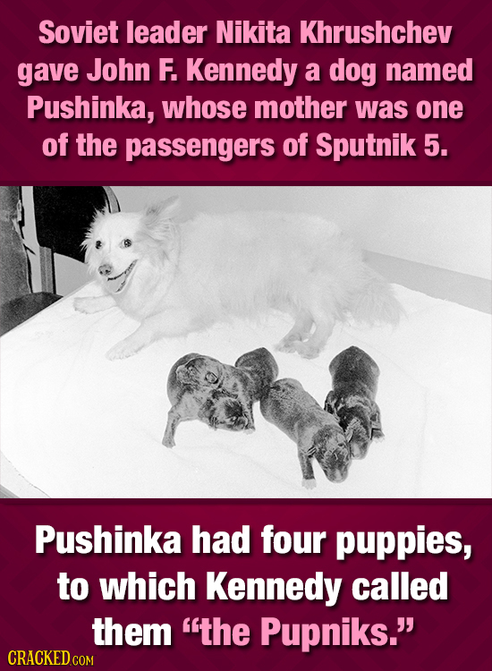 Soviet leader Nikita Khrushchev gave John F. Kennedy a dog named Pushinka, whose mother was one of the passengers of Sputnik 5. Pushinka had four pupp