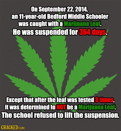 On September 22, 2014, an 11-year-old Bedford Middle Schooler was caught with a Marijuana Leaf. He waS suspended for 364 days. Except that after the l