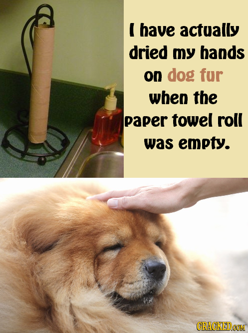 E have actually dried my hands on dog fur when the paper towel roll was empty. CRACKEDCON