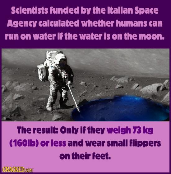 Weird, Fun & Goofy Data From Scientific Studies