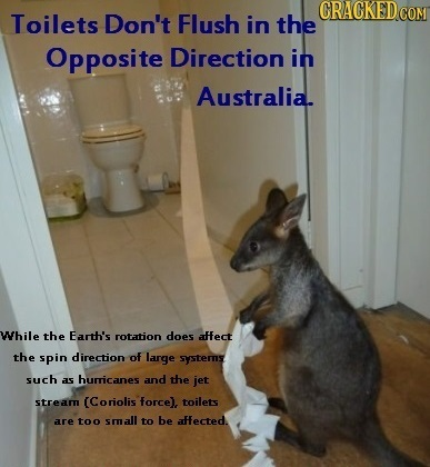 CRACKED Toilets Don't Flush in the Opposite Direction in Australia. While the Earth's rotation does affect the spin direction of laurge systerns such