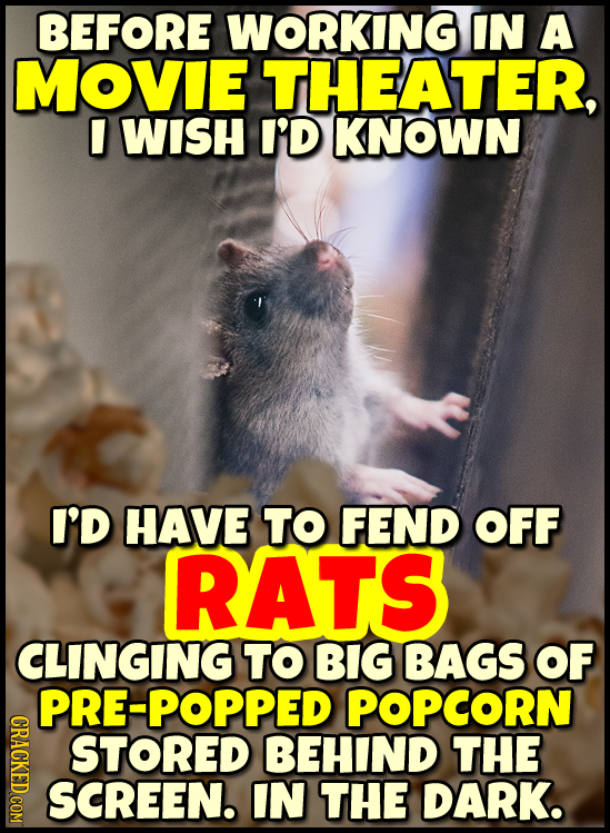 BEFORE WORKING IN A MOVIE THEATER, WISH I'D KNOWN I'D HAVE TO FEND OFF RATS CLINGING TO BIG BAGS OF PRE-POPPED POPCORN GRAOT STORED BEHIND THE SCREEN.