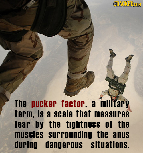 CRACKEDCO com E> The pucker factor, a milltary term, is a scale that measures fear by the tightness of the muscles surrounding the anus during dangero