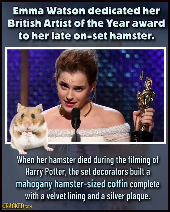 Emma Watson dedicated her British Artist Of the Year award to her late on-set hamster. When her hamster died during the filming of Harry Potter, the s