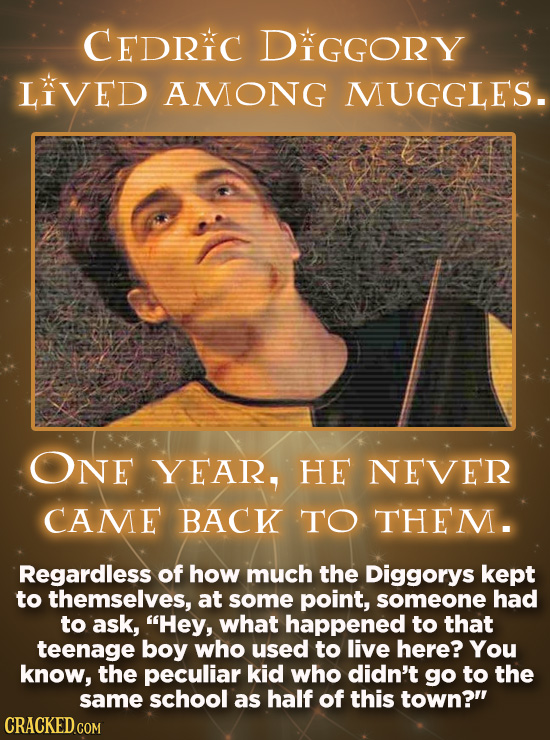 CEDRIC DIGGORY LIVED AMONG MUGGLES. ONE YEAR, HE NEVER CAME BACK TO THEM. Regardless of how much the Diggorys kept to themselves, at some point, someo
