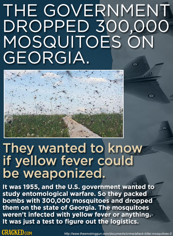 THE GOVERNMENT DROPPED 300,000 MOSQUITOES ON GEORGIA. They wanted to know if yellow fever could be weaponized. It was 1955, and the U.S. government wa