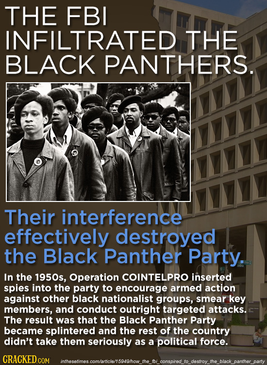 THE FBI INFILTRATED THE BLACK PANTHERS. Their interference effectively destroyed the Black Panther Party. In the 1950s, Operation COINTELPRO inserted