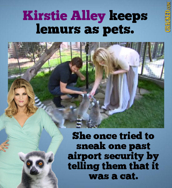 Kirstie Alley keeps lemurs as pets. CRaN She once tried to sneak one past airport security by telling them that it was a cat.