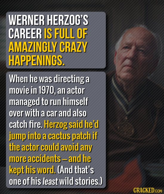 WERNER HERZOG'S CAREER IS FULL OF AMAZINGLY CRAZY HAPPENINGS. When he was directinga a movie in 1970, an actor managed to run himself over with a car