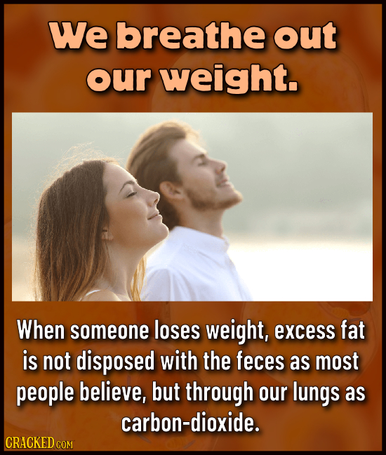 We breathe out our weight. When someone loses weight, excess fat is not disposed with the feces as most people believe, but through our lungs as carbo