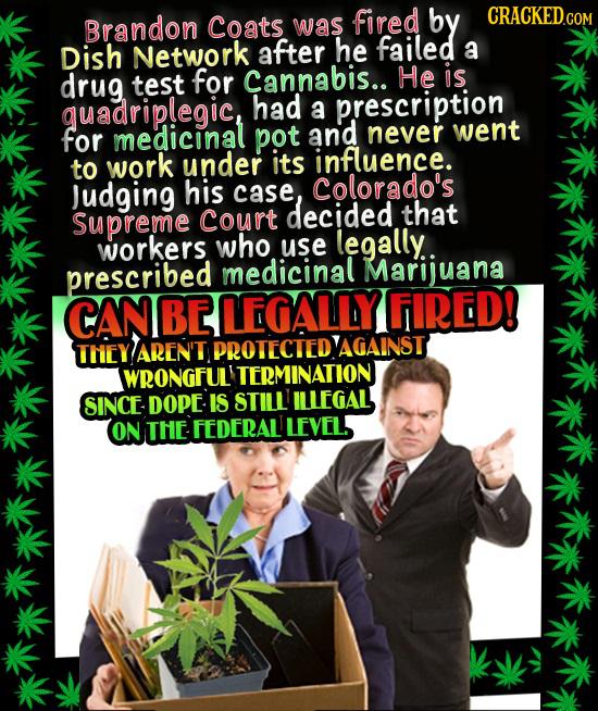 The 23 Worst Overreactions To Marijuana