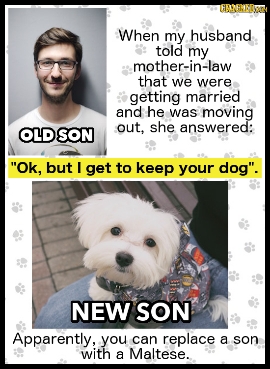 When my husband told my mother-in-law that we were getting married and he was moving out, she answered: OLD SON Ok, but I get to keep your dog. NEW