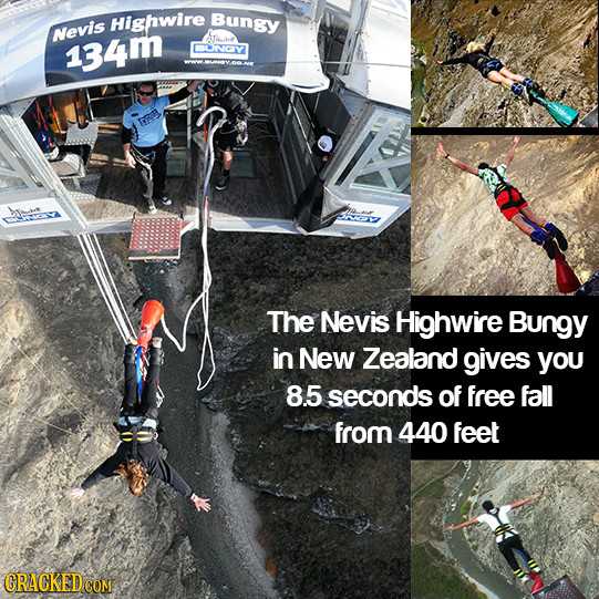 Highwire Bungy Nevis 134m BLNCY Eg SOY The Nevis Highwire Bungy in New Zealand gives you 8.5 seconds of free fall from 440 feet CRACKED COM