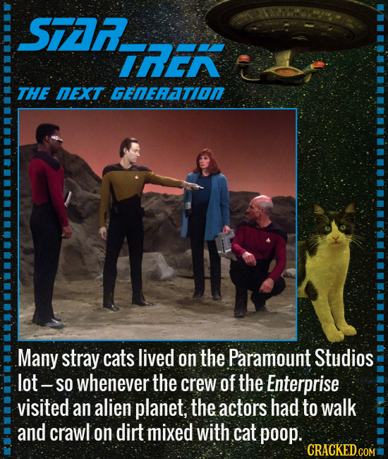 S7A IRER THE NEXT. GENERATION Many stray cats lived on the Paramount Studios lot- SO whenever the crew of the Enterprise visited an alien planet, the