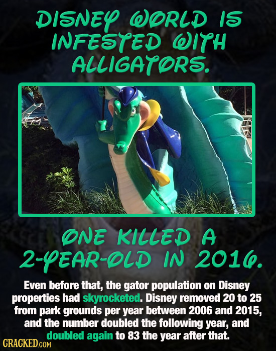 DISNEY WORLD IS INFESTED WITH ALLIGATOR'S. ONE KILLED A 2-YEAR-OLD IN 201. Even before that, the gator population on Disney properties had skyrocketed