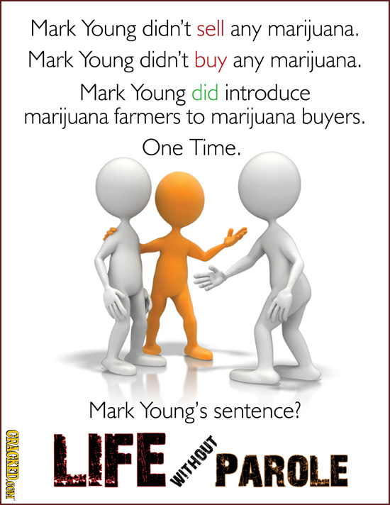 Mark Young didn't sell any marijuana. Mark Young didn't buy any marijuana. Mark Young did introduce marijuana farmers to marijuana buyers. One Time. M