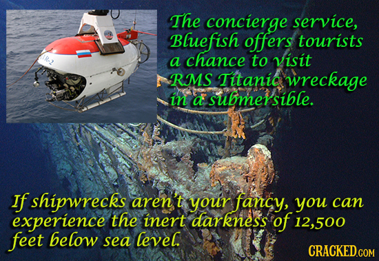 The concierge service, Bluefish offers tourists a chance to visit RMS Titanic wreckage in a submersible. If shipwrecks aren't your fancy, you can expe