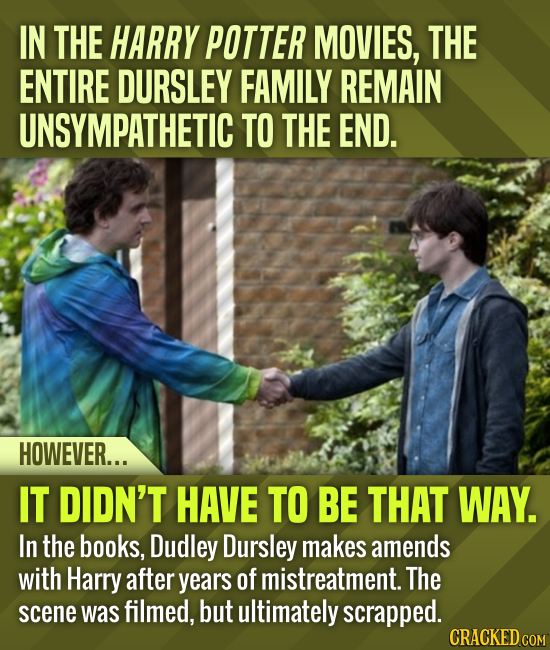 IN THE HARRY POTTER MOVIES, THE ENTIRE DURSLEY FAMILY REMAIN UNSYMPATHETIC TO THE END. HOWEVER... IT DIDN'T HAVE TO BE THAT WAY. In the books, Dudley