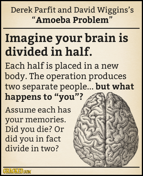Derek Parfit and David Wiggins's Amoeba Problem Imagine your brain is divided in half. Each half is placed in a new body. The operation produces two