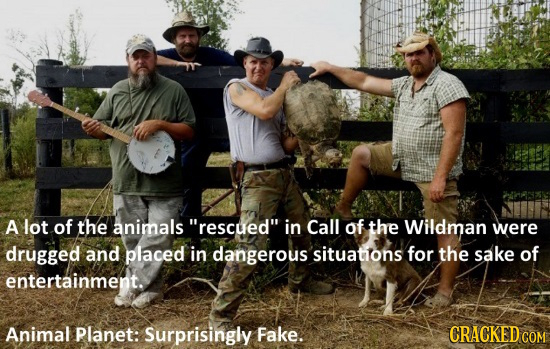 A lot of the animals rescued in Call of the Wildman were drugged and placed in dangerous situations for the sake of entertainment. Animal Planet: Su