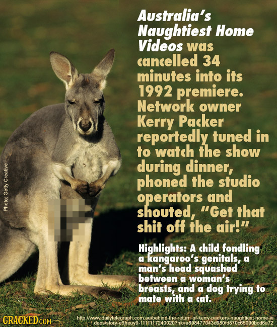 Australia's Naughtiest Home Videos was cancelled 34 minutes into its 1992 premiere. Network owner Kerry Packer reportedly tuned in to watch the show d