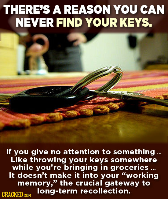 THERE'S A REASON YOU CAN NEVER FIND YOUR KEYS. If you give no attention to something ... Like throwing your keys somewhere while you're bringing in gr